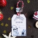 Just for you christmas tag