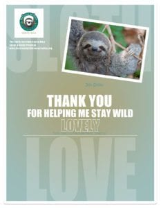 Adopt-a-Sloth-certificate-of-JonSnow-for-Lovely-web
