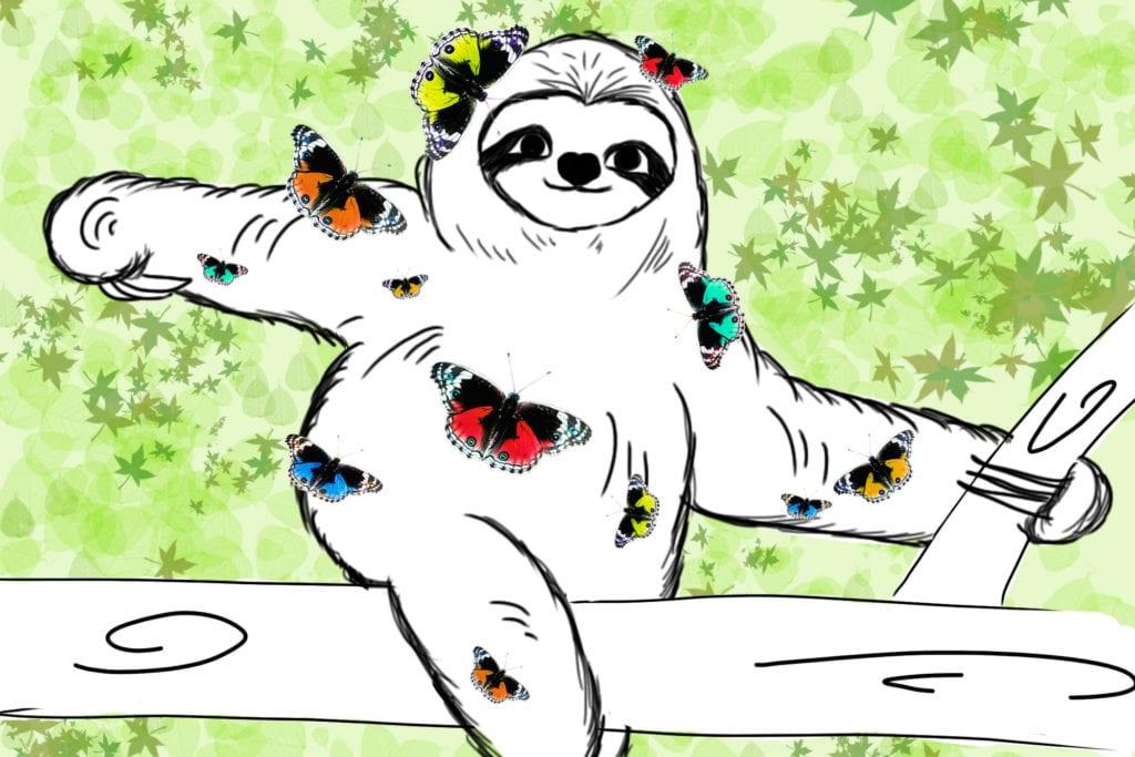 Faultierwissen Lovely Sloth Faultiere und Schmetterlinge