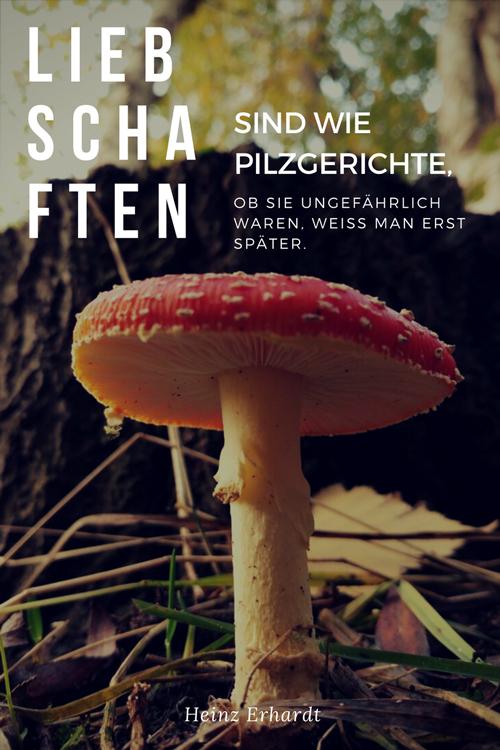 Heinz-Erhardt-Liebschaften-sind-wie-Pilzgerichte-Liebeszitate-lovelysloth