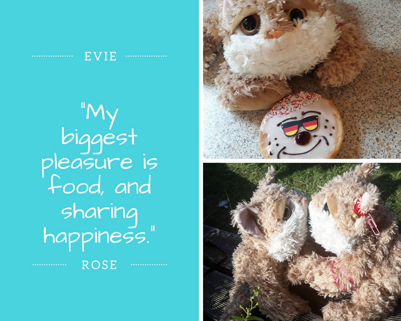 evy-rose-zitat-lovely-sloth